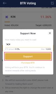 BTR Voting参加手順